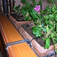 pipette d'arrosage pour balconnière