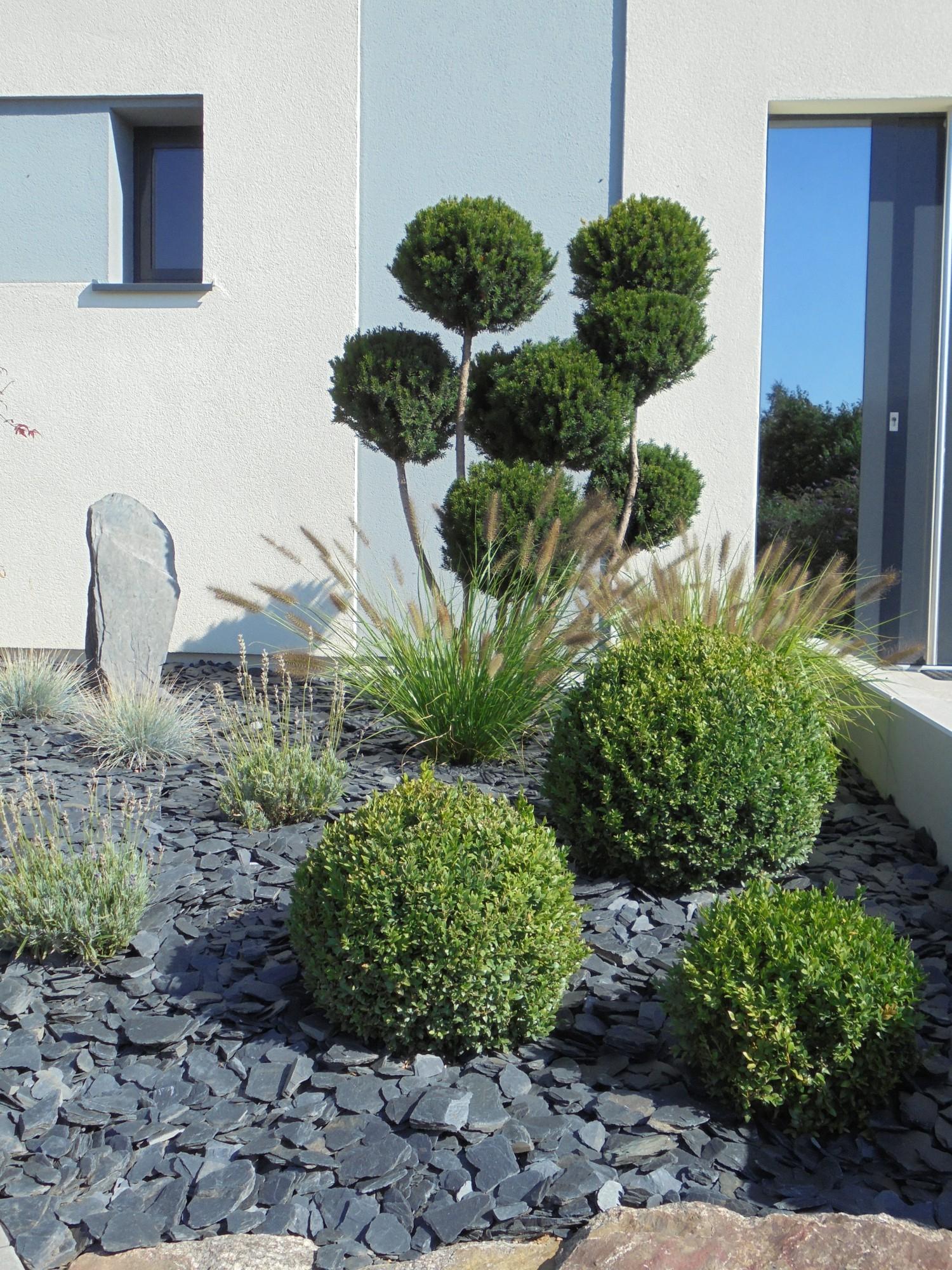 Plantes Pour Jardin Contemporain massif paysager contemporain| paysagiste alsace - lehmann